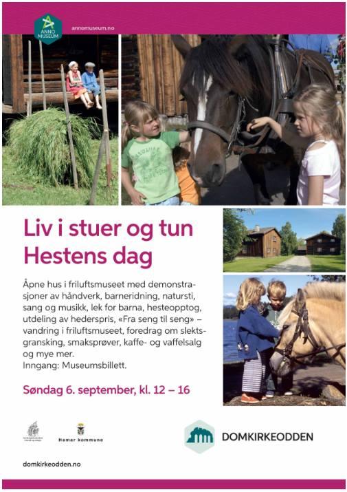 Liv i stuer og tun – Hestens dag – søndag 6. September på Domkirkeodden.