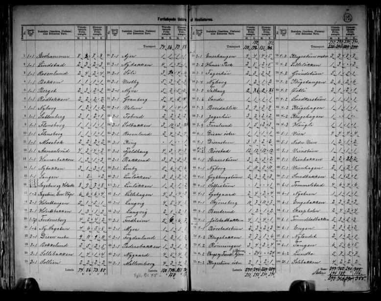 Avskrift folketellingen 1891 for Vang.